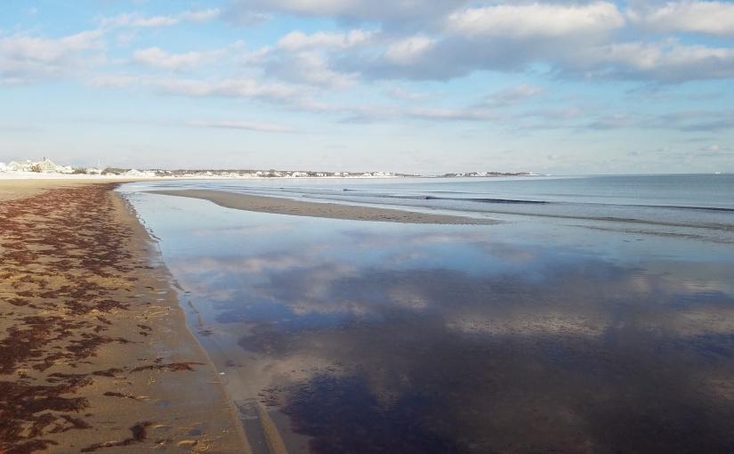 Low Tide Lesson